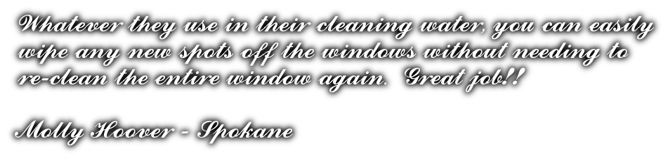 Window cleaners review